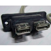 USB-разъемы HP 451784-001 (459184-001) для корпуса HP 5U tower (Дубна)