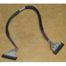 FDD-кабель HP 271946-006 для HP ML370 G3 G4 (Дубна)